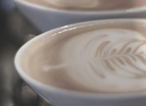 qualia-szczecin-kawa