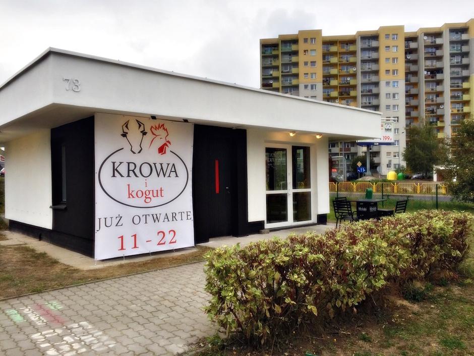 kogut-krowa-szczecin