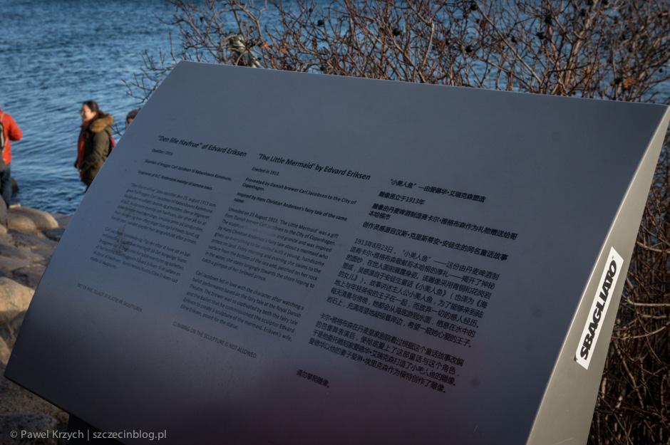 Ciekawostka - opisy sądostępne po duńsku, po angielsku oraz… po chińsku.