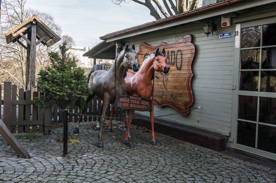 Jest i gdzie zaparkować konia.