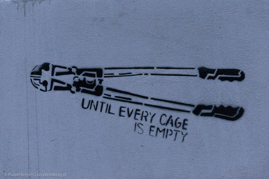 """We are fighting until every cage is empty, not until every cage is comfortable."""